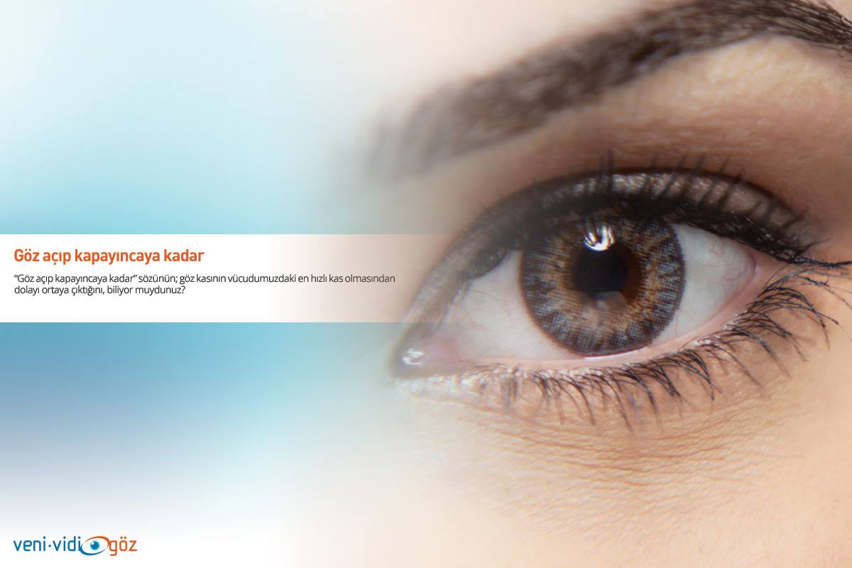 Tek taraflı göz kapağı düşmesi (Pitozis)